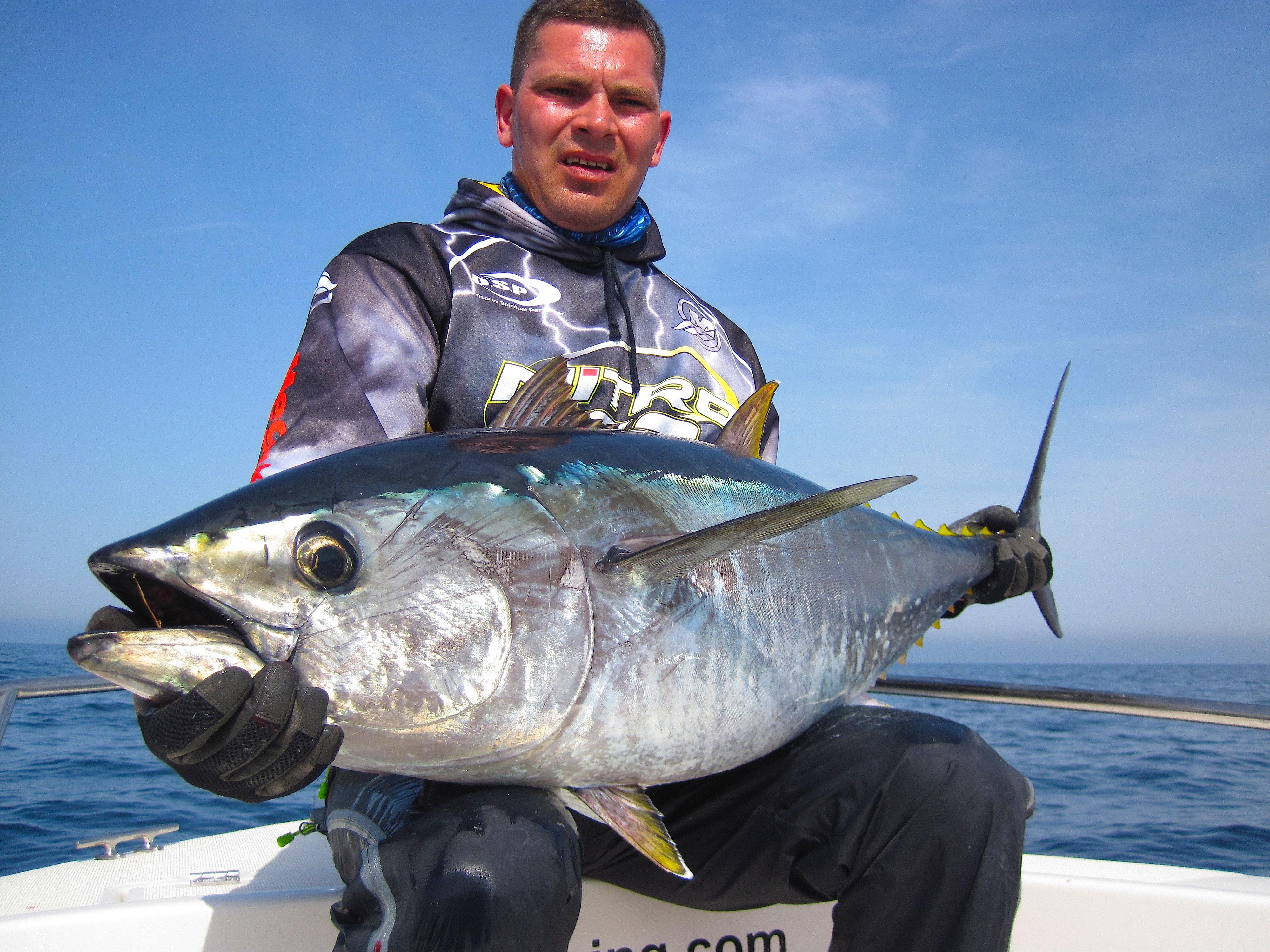 atún rojo a spinning
